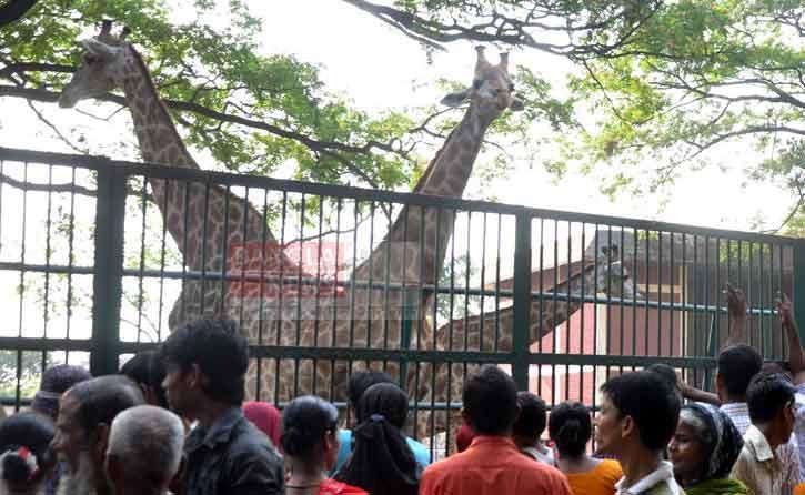 'ঢাকা চিড়িয়াখানা'র নাম পরিবর্তন করে 'বাংলাদেশ জাতীয় চিড়িয়াখানা'তে রূপান্তর।