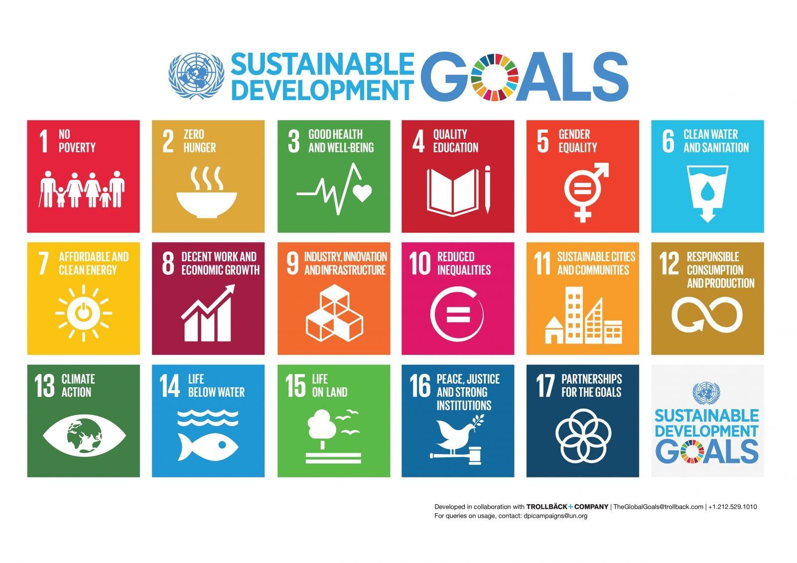 সর্বসম্মতভাবে SDG গৃহীত।