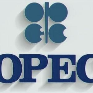 সিদ্ধান্ত ছাড়াই কাতারে শেষ হলো ওপেক (OPEC) শীর্ষ সম্মেলন